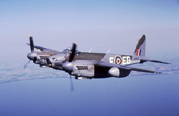 DH_Mosquito_Image